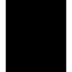Ecouteurs sans fils - JVC HA-A7T Noirs
